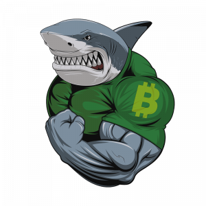 Aprender Trading de bitcoin y criptomonedas